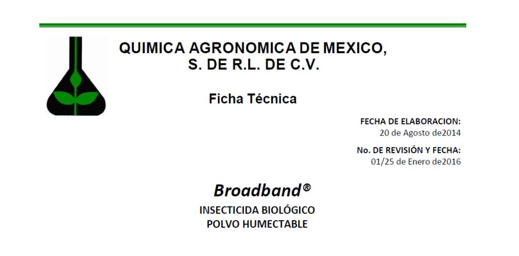 broadbandP-1024x506